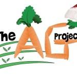 AG Project Santa Hat half size